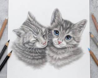 Kittylove :)