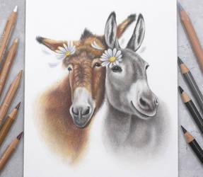 Donkey friends :)