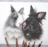 Bunnies2 :)