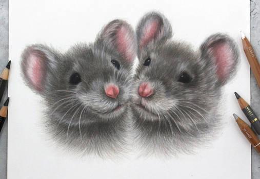 Little buddies :)