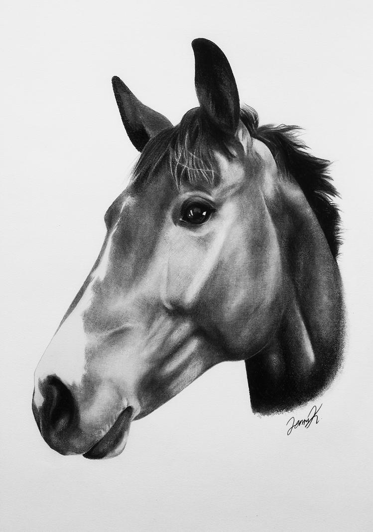 Horse Pencil Portrait by Nanospiral