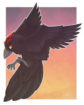 A Raven named Foxtrack