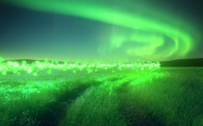 Glowing Grass Field