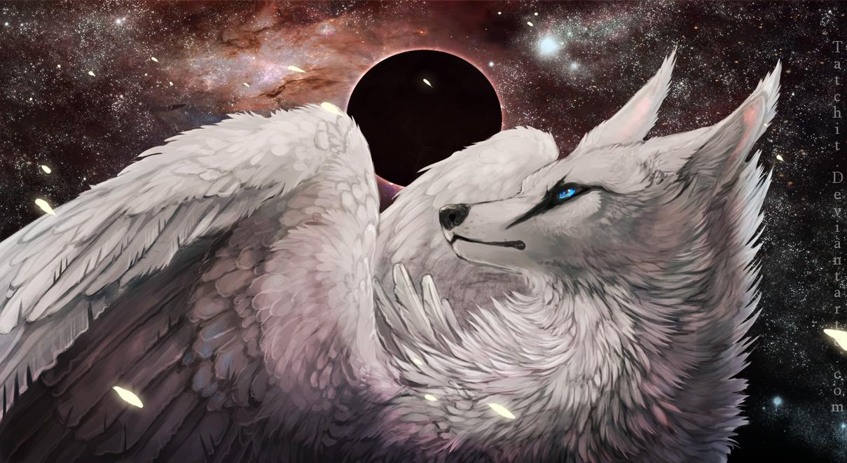 Starburst by Tatchit