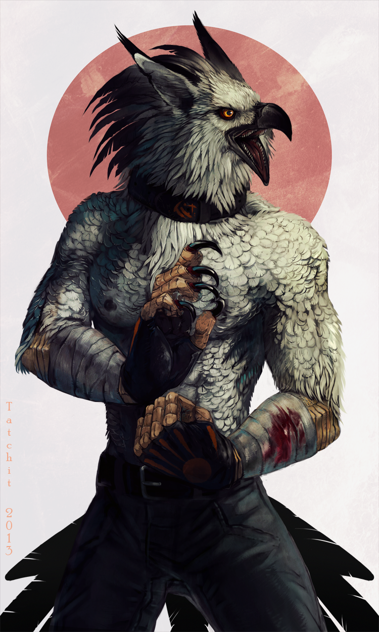 Brawling Bird by Tatchit