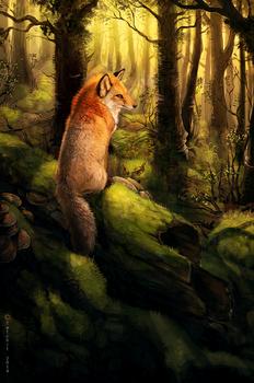 Dawn of the Fox