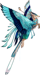 Indian Roller Feonix adopt by NukeRooster