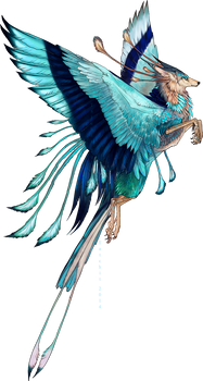 Indian Roller Feonix adopt