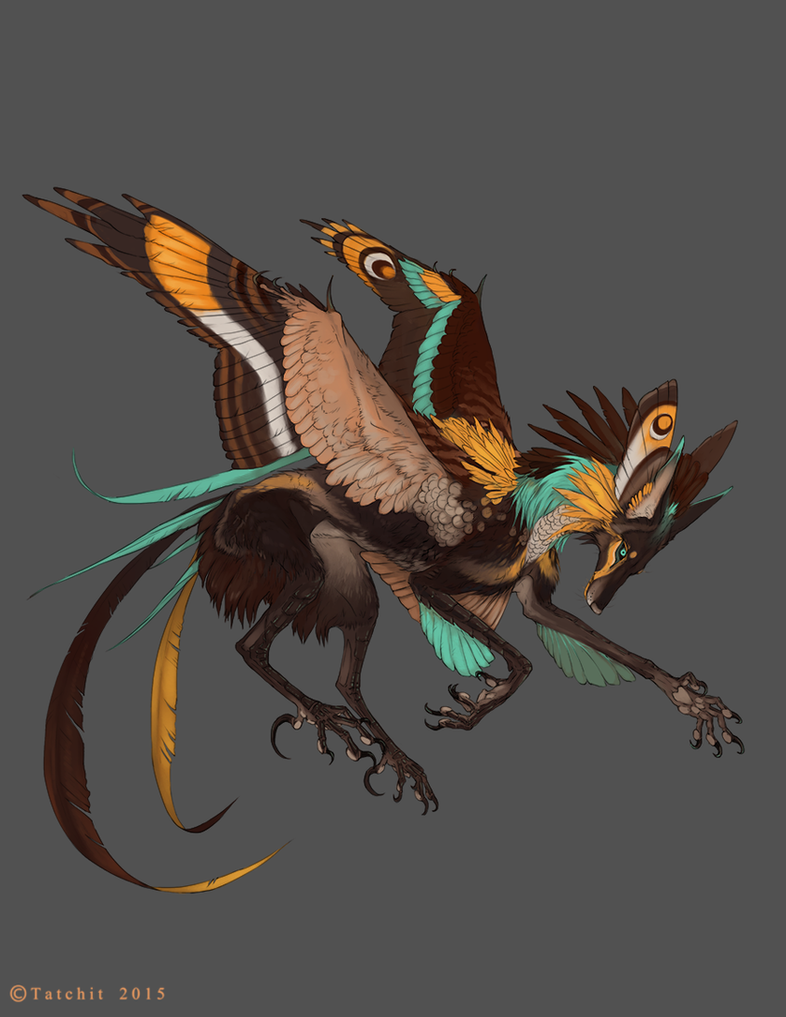 Pale Throated Gliding Feonix by Tatchit