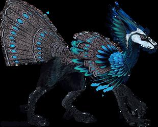 Palawan Peacock Pheasant Feonix