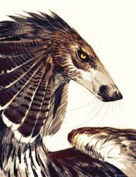 Feonix Sketch by NukeRooster