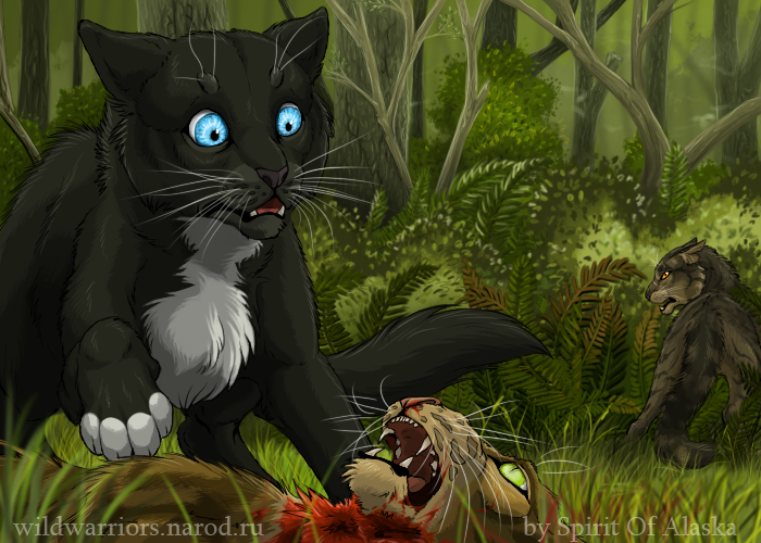 Tigerclaw's Fury. Ch. VI by Spirit-Of-Alaska