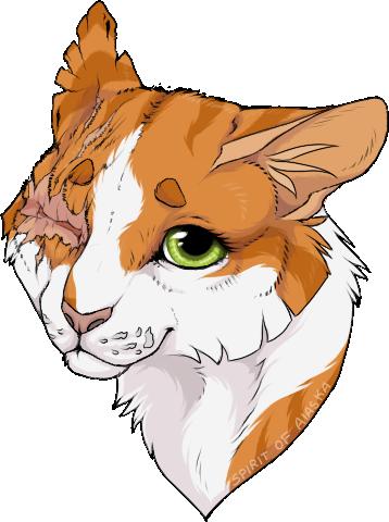 Warrior cats was oakheart and bluestar dating 3