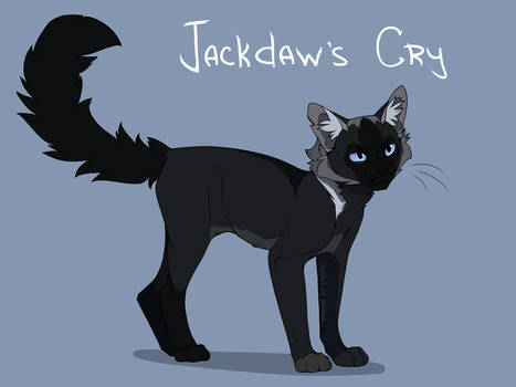 Jackdaw's Cry