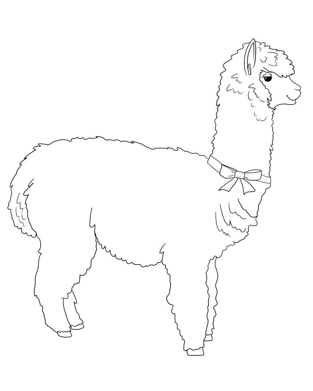 Line Drawing Llama : Alpaca lineart by meeowy on deviantart