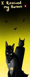 Batman Cat by Meeowy
