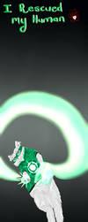 Green Lantern Persian by Meeowy