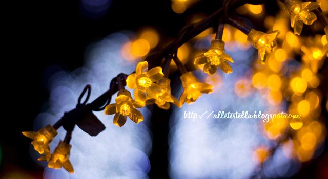 flower bokeh by alLets-Lexy