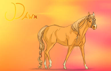 Dawn Reference by xDjurax