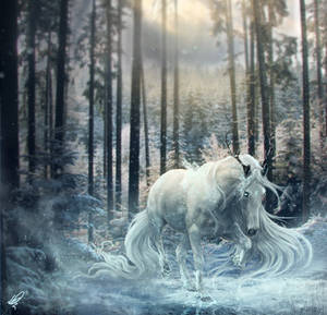 Frost King by xDjurax