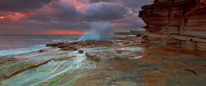 Burst of Colour by MarkLucey