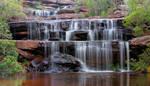 Falls of the Bush