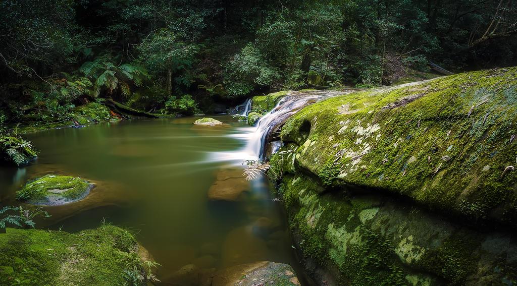Bush Rock Garden by MarkLucey