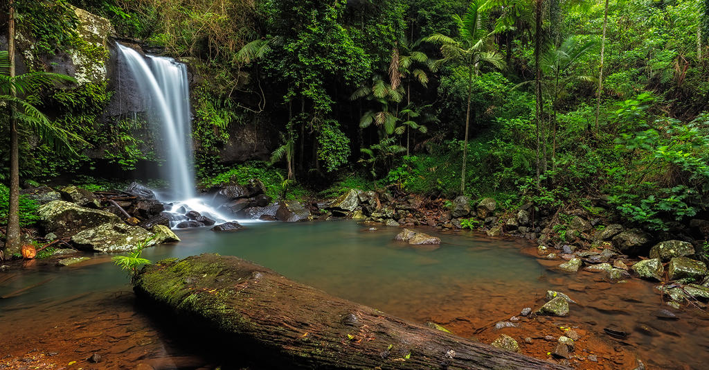 Curtis Falls - Mt Tamborine by MarkLucey