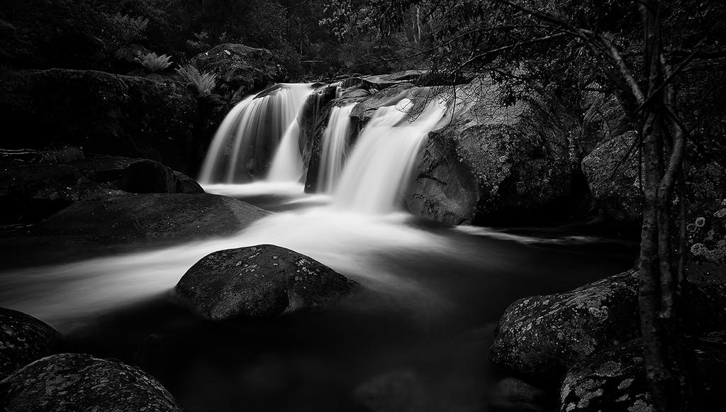 Purity by MarkLucey