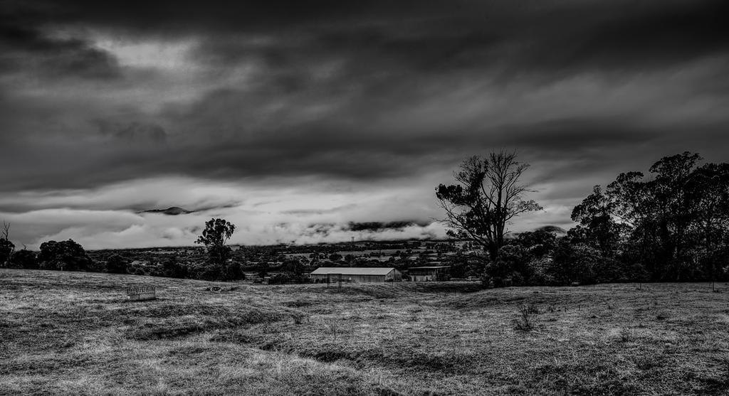 Mist on the Plains by MarkLucey