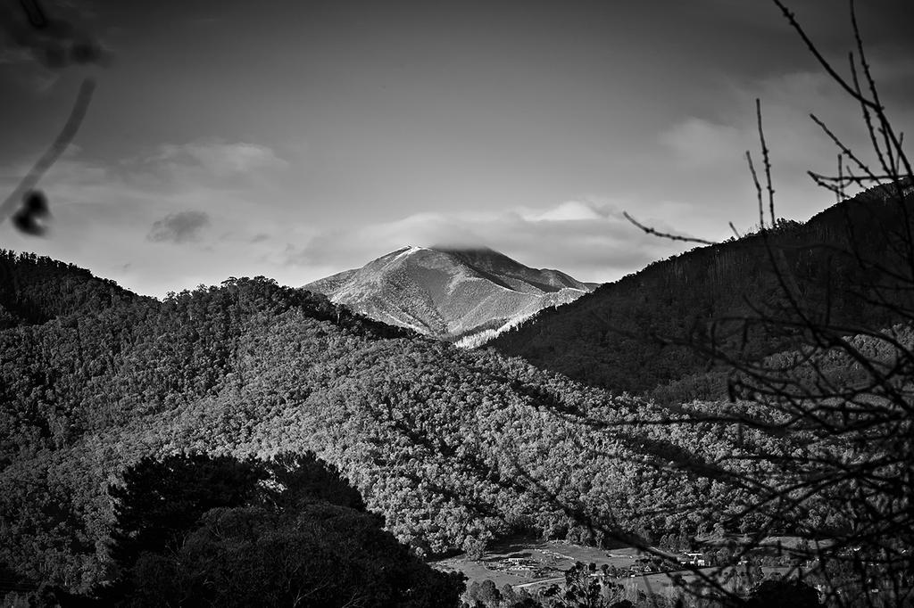 Feathertop by MarkLucey