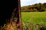 Glancing out - landscape