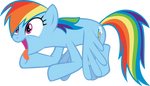 Dash Cheering for Cider