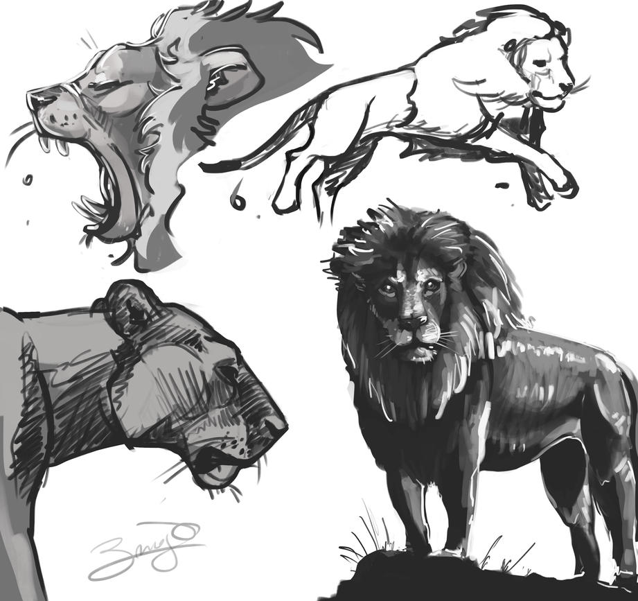 Quick Lions sketch by Mun-B