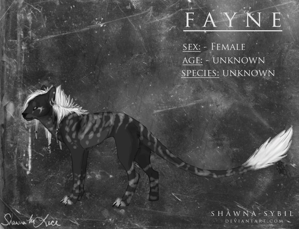 Fayne Reference Sheet by Shawna-Sybil