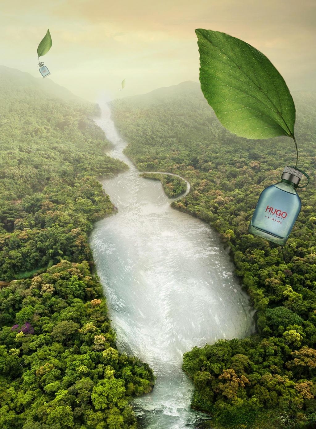 Hugo2- One Fragrance, One Tree
