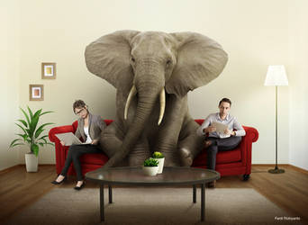Elephant in the room by pepey