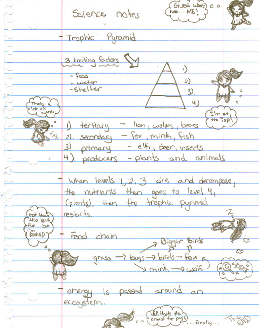 how to write science notes