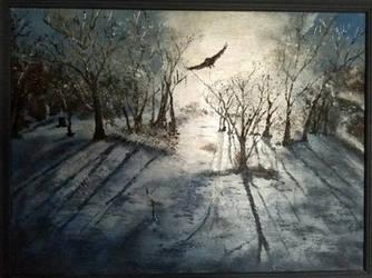 my backyard in winter by vitani0090