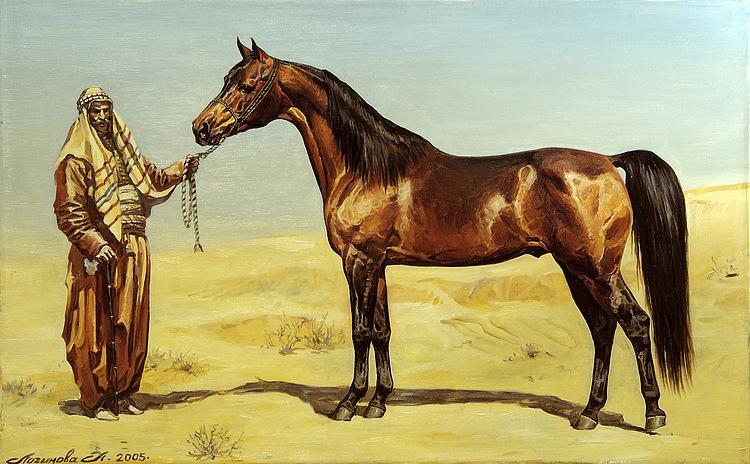 Arabian horse. by Loginova