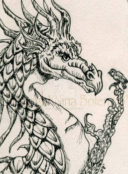Pen and Ink Dragon ACEO
