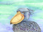 Shoe Bill Stork Watercolor Painting by The-GoblinQueen