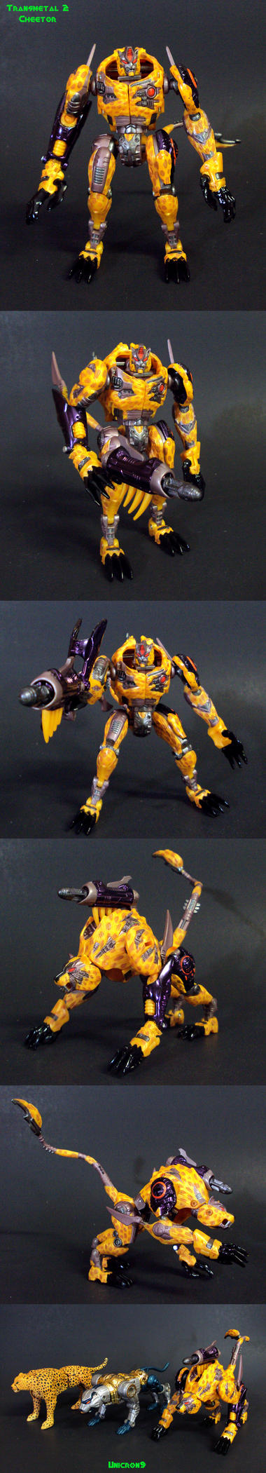 Transmetal 2 Cheetor by Unicron9