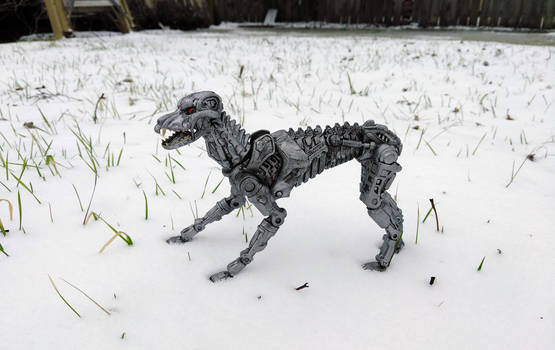 Terminator Dog Wallpaper