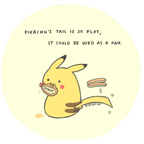 Pikachu's Tail by pikarar