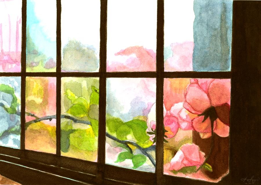 Windows by pikarar