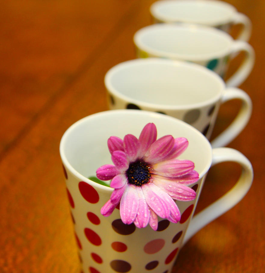 najromanticnija soljica za kafu...caj - Page 4 All_lined_up_by_miccy_b-d3ktbuf
