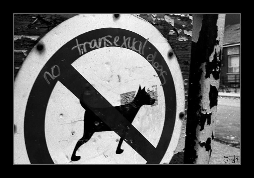 No Transexual Dogs by sishgupta