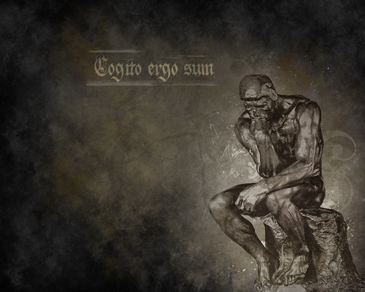 Cogito Ergo Sum by Mrakoslava on DeviantArt I Am Really Sorry Wallpaper