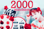 2000 WATCHERS PACK!